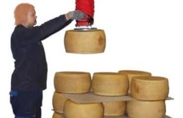manipular ruedas de queso